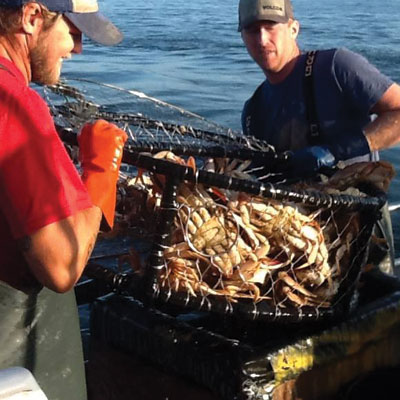 Crab Fishing Charter